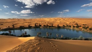 Vasi putopisi-Safari kroz Saharu1
