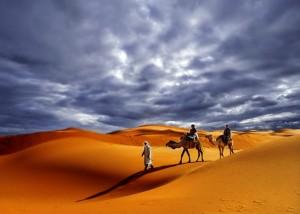 Vasi putopisi-Safari kroz Saharu4