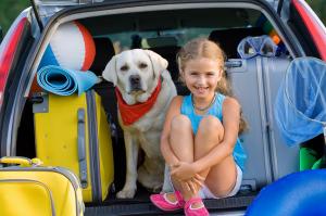 Saveti za putovanje bez stresa