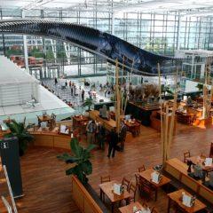 10 najboljih aerodroma u Evropi, II deo