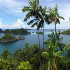 Rajska azijska ostrva bez gužvi, II deo