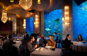 Najspektakularniji podvodni hoteli na svetu