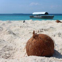 Zanzibar, magija dalekog ostrva