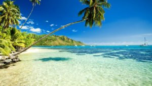 Maui, ostrvo na čijim plažama zimuju kitovi