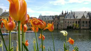 Pet gradova koji su idealna alternativa Amsterdamu