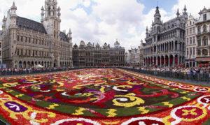 Ogromni cvetni tepih usred grada