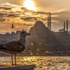 Vremeplov zvani Istanbul