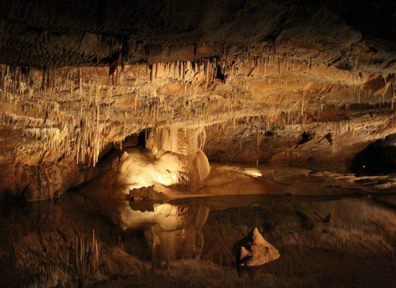 Akcija spasavanja dece proslavila tajlandsku pećinu