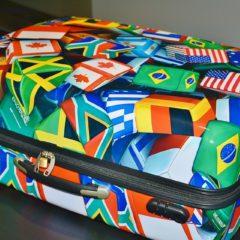 Šta kada je čekirani prtljag oštećen?