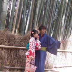 Bambusova šuma, Arašijama, Japan