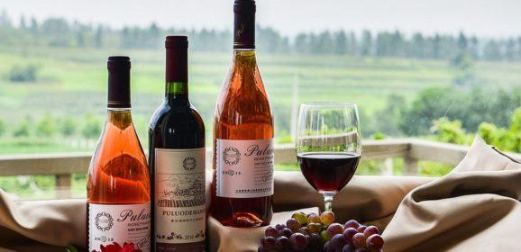 Najbolje vinarije sveta