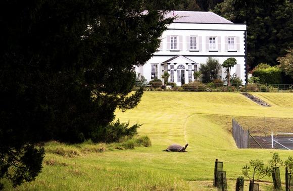 Plantation House i najstarija kornjača na svetu -Džonatan