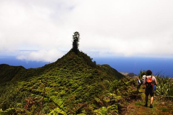 Dajanin vrh je najviša tačka ovog vulkanskog ostrva