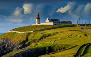 Pitoma irska divljina