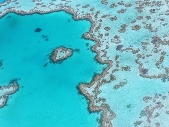Veliki koralni greben je jedno od najvećih čuda prirode