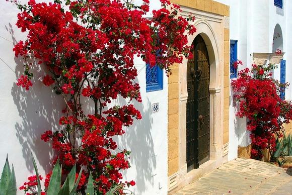 Tunis je odlična prolećna destinacija
