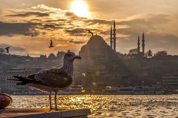 Osim fantastičnog vremena ove jeseni, u Istanbulu možete pronaći i mnoštvo kulturnih dešavanja