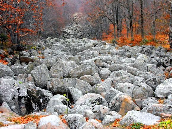 """Ljubitelji prirode treba da posete Zlatnite mostove, geološki fenomen """"kamene reke"""" koja se proteže između 1.700 i 1.350m nadmorske visine"""