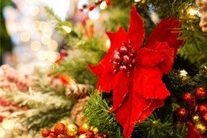 Najlepše evropsko božićno drvo nalazi se u Vilnjusu