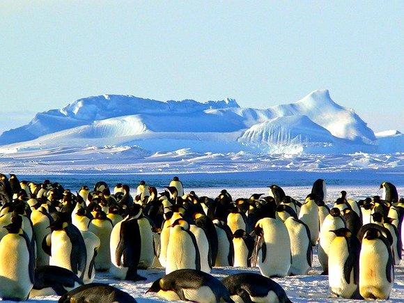 Svi smo iskusili hladnoću na svojim putovanjima tokom zime, pogotovo ako ste posetili severnije zemlje. Ali, sva ta iskustva nisu ni nalik zimi koju ćete ovde doživeti