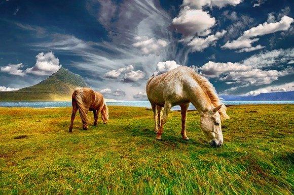 Turizam je na Islandu proteklih nekoliko godina eksplodirao. Malo ostrvo između Evrope i Severne Amerike privlači turiste zbog specifičnih pejzaža - vulkana, gejzira, toplih izvora i glečera, ali i zbog gostoprimljivosti Islanđana