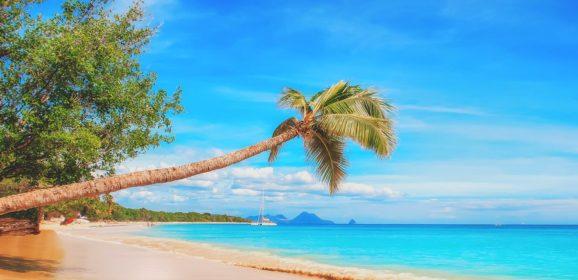 Karibi – najbolje od najboljeg u tropskom raju