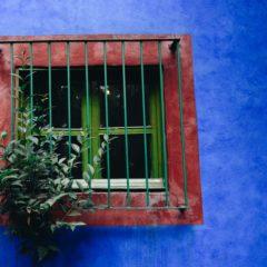 La Casa Azul – posetite kuću u kojoj je živela Frida Kalo
