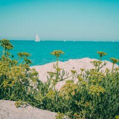 7 najlepših skrivenih ostrva Francuske