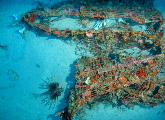 Atrakcija Alonizosa – Grčka dobija svoj prvi podvodni muzej