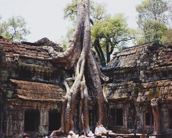 Hram Ta Prom je jedan od najpoznatijih u Angkoru