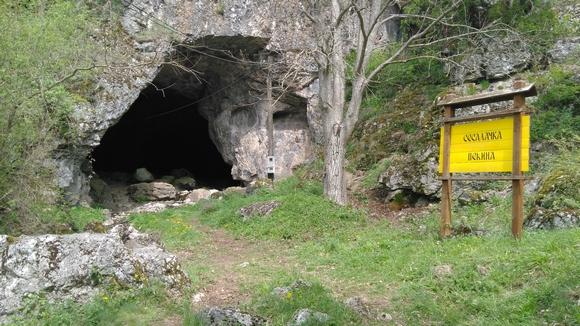 Da biste iz Sokobanje stigli do Sesalačke pećine, krenite ka Knjaževcu i pratite putokaz za selo Sesalac, a potom za samu pećinu