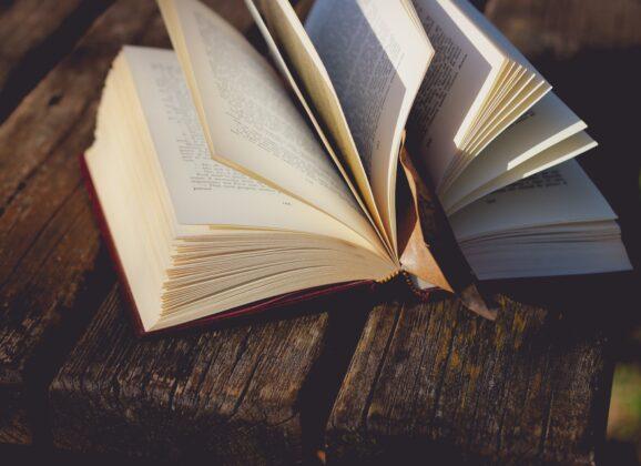 Odigrajte naš oktobarski kviz znanja i osvojite Laguna knjige!