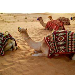 Greške koje bi trebalo da izbegnete prilikom posete Dubaiju